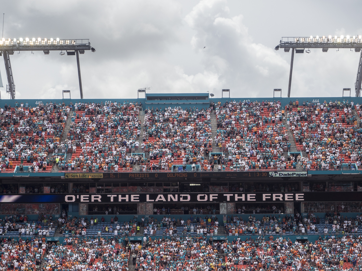 Miami Dolphins/New England Patriots 2014